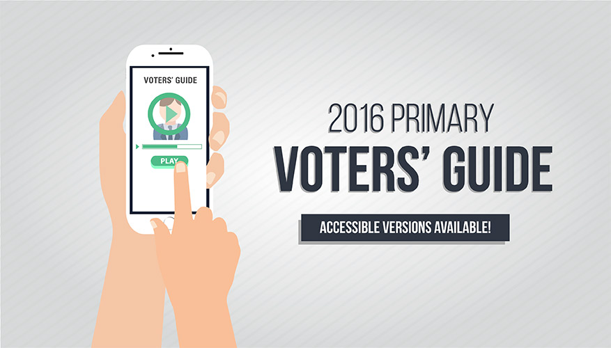 Primary voters guide