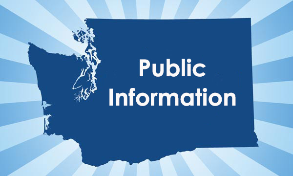 What voter information is considered public record