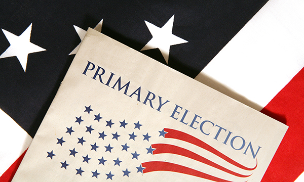 Primary election graphic